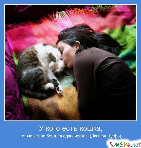 У кого есть кошка, - тот может не бояться одиночества. (Даниель Дефо)