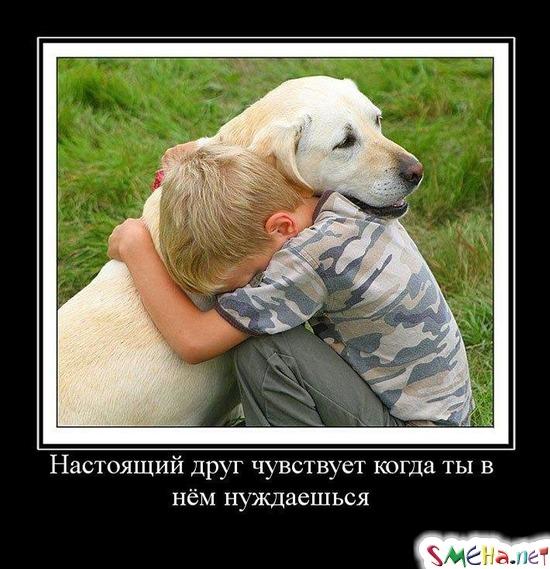 Настоящий друг чувствует когда ты в нем нуждаешься