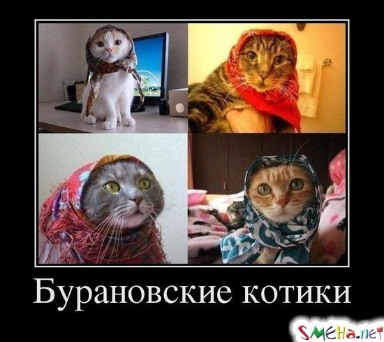 http://static.smeha.net/s/demotivators/dFxYRllqclMEVIO.jpg