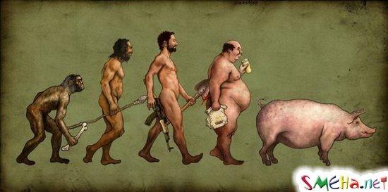 Прикольная эволюция
