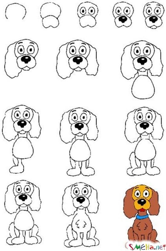 Уроки рисования - собака